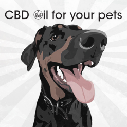 Cannalife CBD Oil for Pets